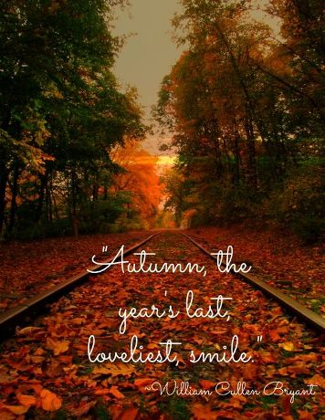 Happy Fall Quotes 2016, Fall Yall Autumn Quotes, Fall Season Quotes, Fal...
