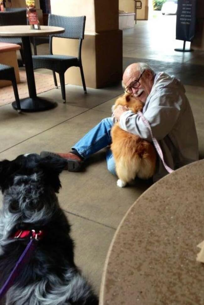 25 Thrilling Images That Made Our Day - The emotional reunion of old friends