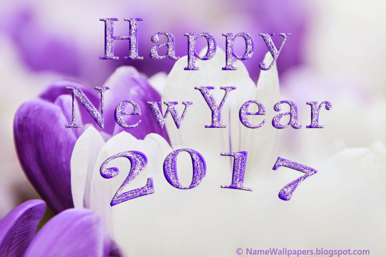 Happy New Year 2017 Wallpapers