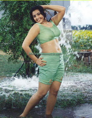 Meena Fake Nude 25