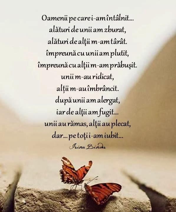 citate despre fluturi IRINA BINDER   Insomnii: Citate   Irina Binder citate despre fluturi