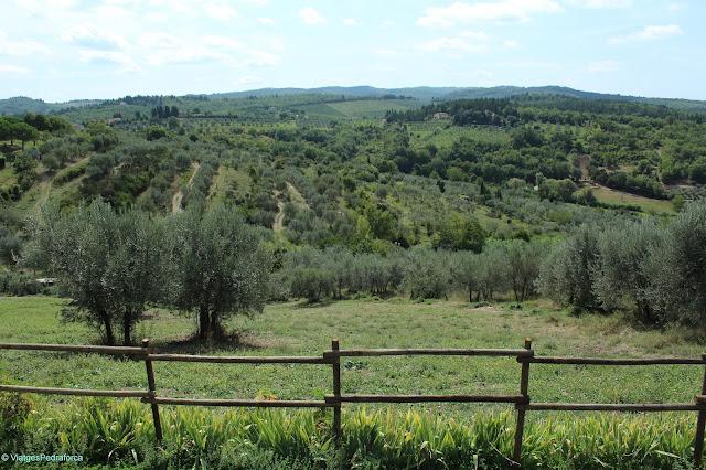 San Donato in Poggio, Rutal del Chianti, Toscana, Itàlia