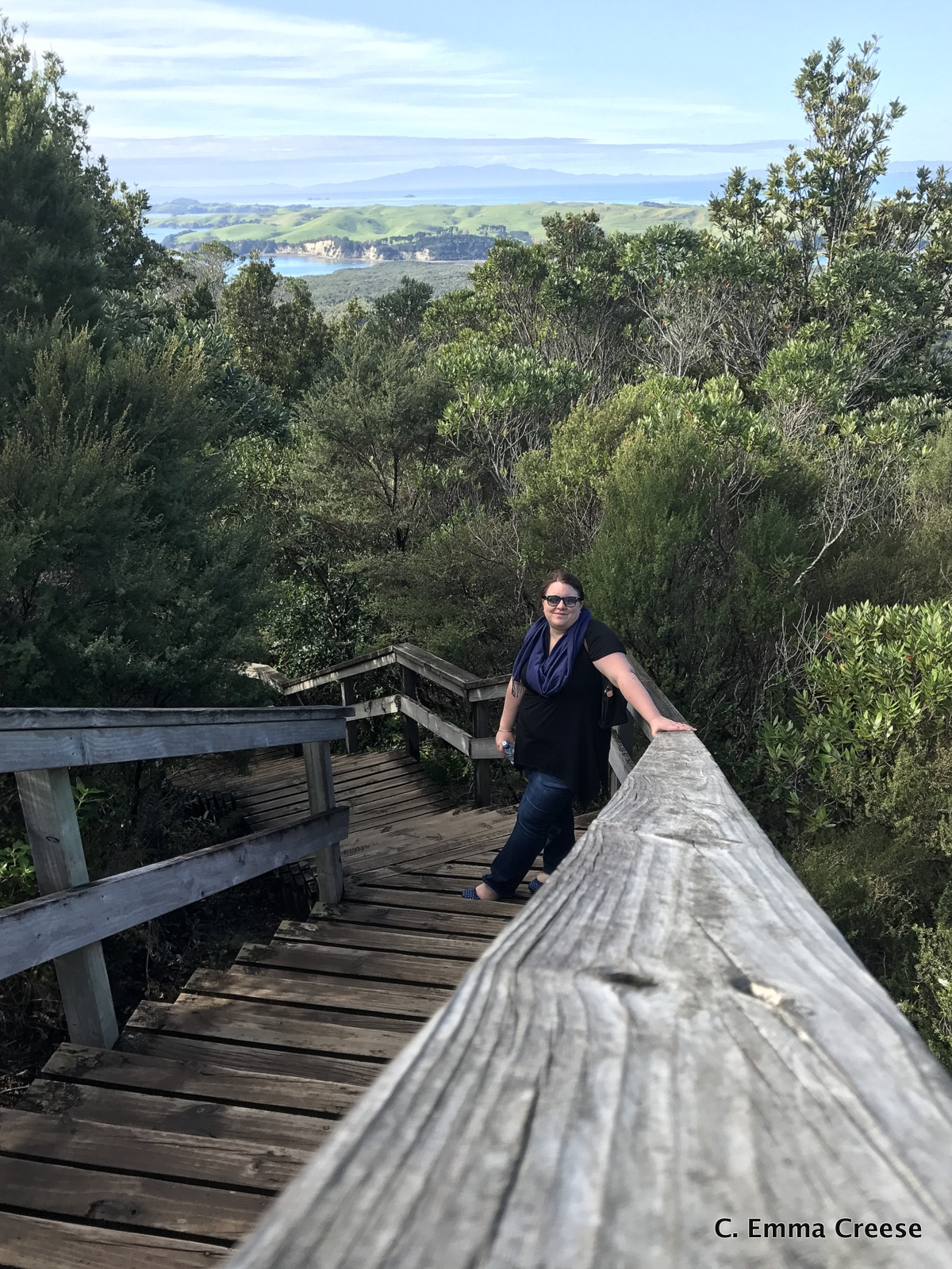 That time we went out for brunch and accidentally hiked the Rangitoto volcano crater