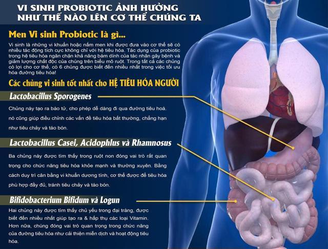 Thành phần chính trong thuốc uống Probio White