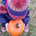 Pumpkin Picking at Kenyon Hall Farm x