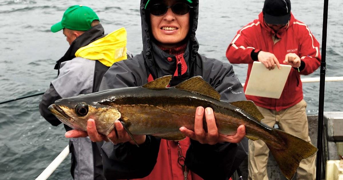 Какие нужны снасти для рыбалки в Норвегии?