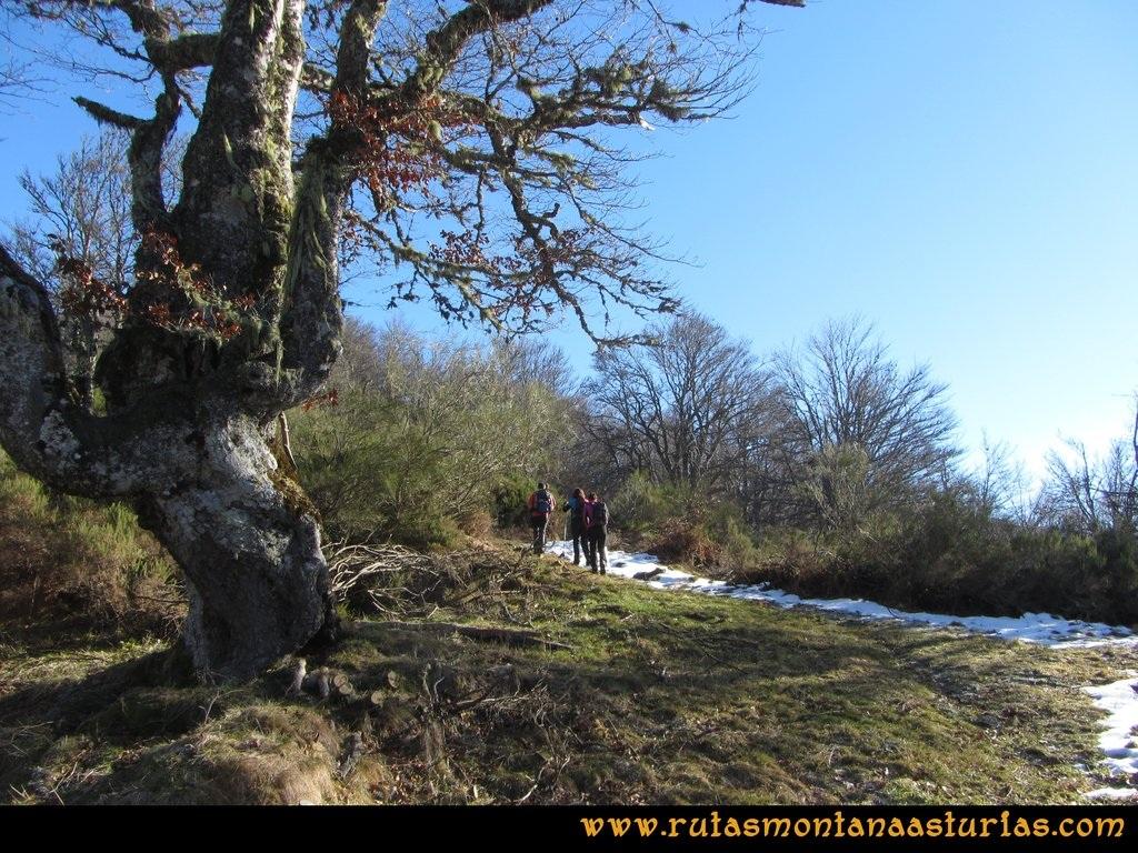 Pico Mosquito desde Tarna: Por la arista hacia collado Paréu