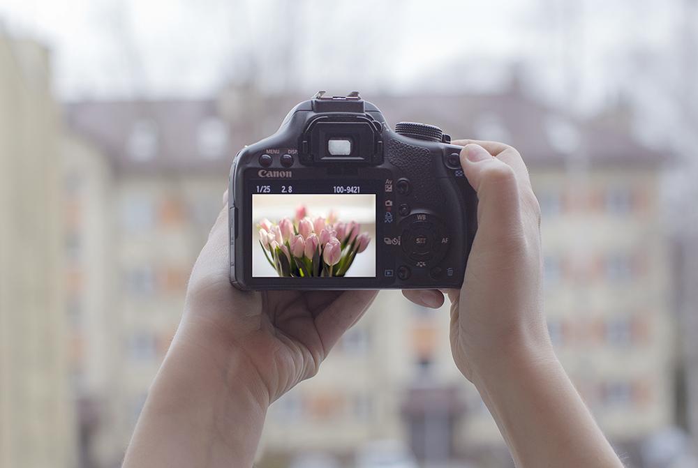 фотополювання, колекціонування за допомогою фотографії
