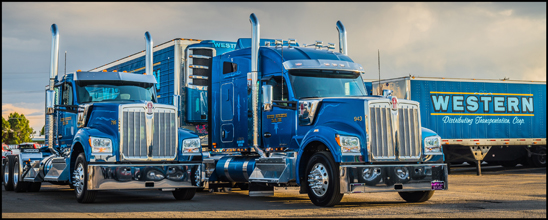 Western Distributing Kenworth W990s