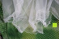 Erfahrungsbericht: Romantische Crimpen Rand Braut Schleier Elfenbein Elfenbein