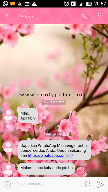 SMS minta pin BB