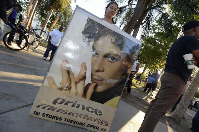 Seguidores de Prince