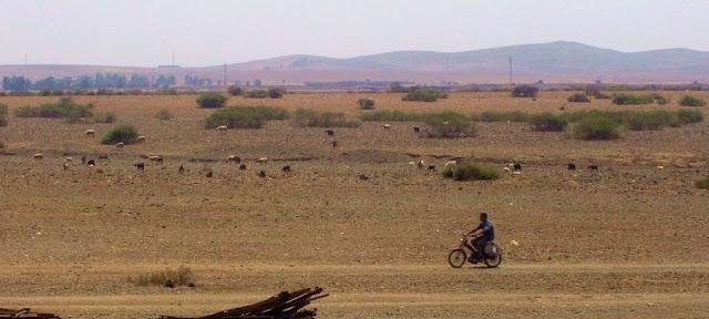 W drodze do Marrakeszu