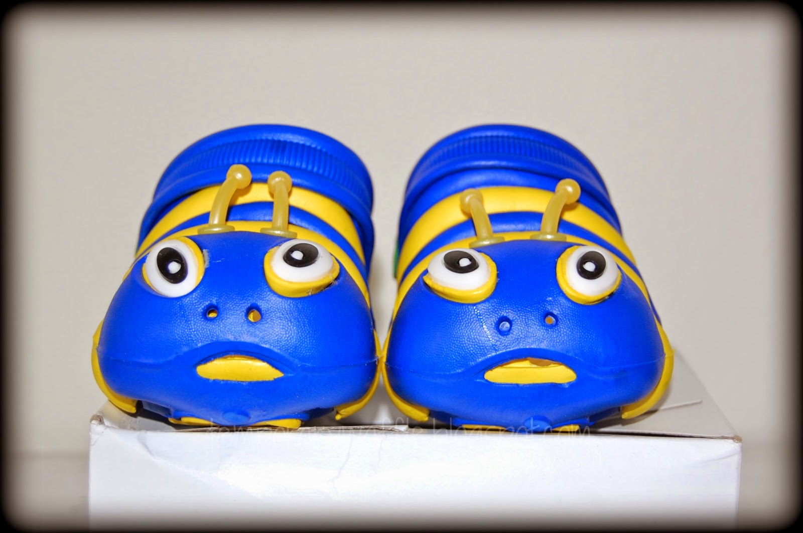 Caterpillars Shoes For Sale