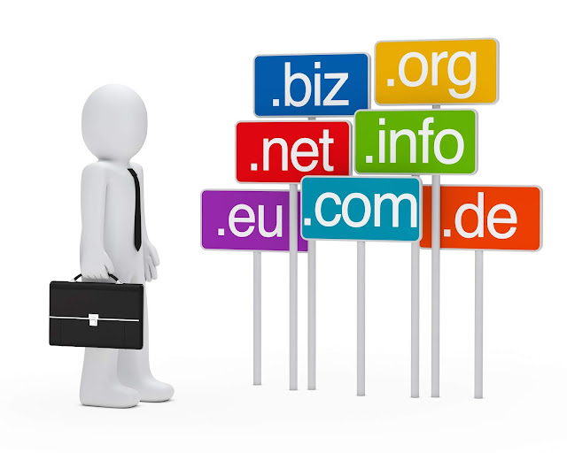 Information about web domain