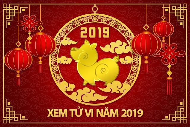 TU VI NAM 2019 BLOG TRAN TU LIEM