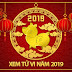 XEM TỬ VI NĂM 2019 KỶ HỢI CÁC TUỔI NAM NỮ