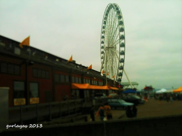 ferris wheel at seattle waterfront by gurlayas.blogspot.com