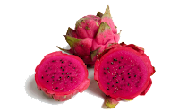 dragon fruit clipart