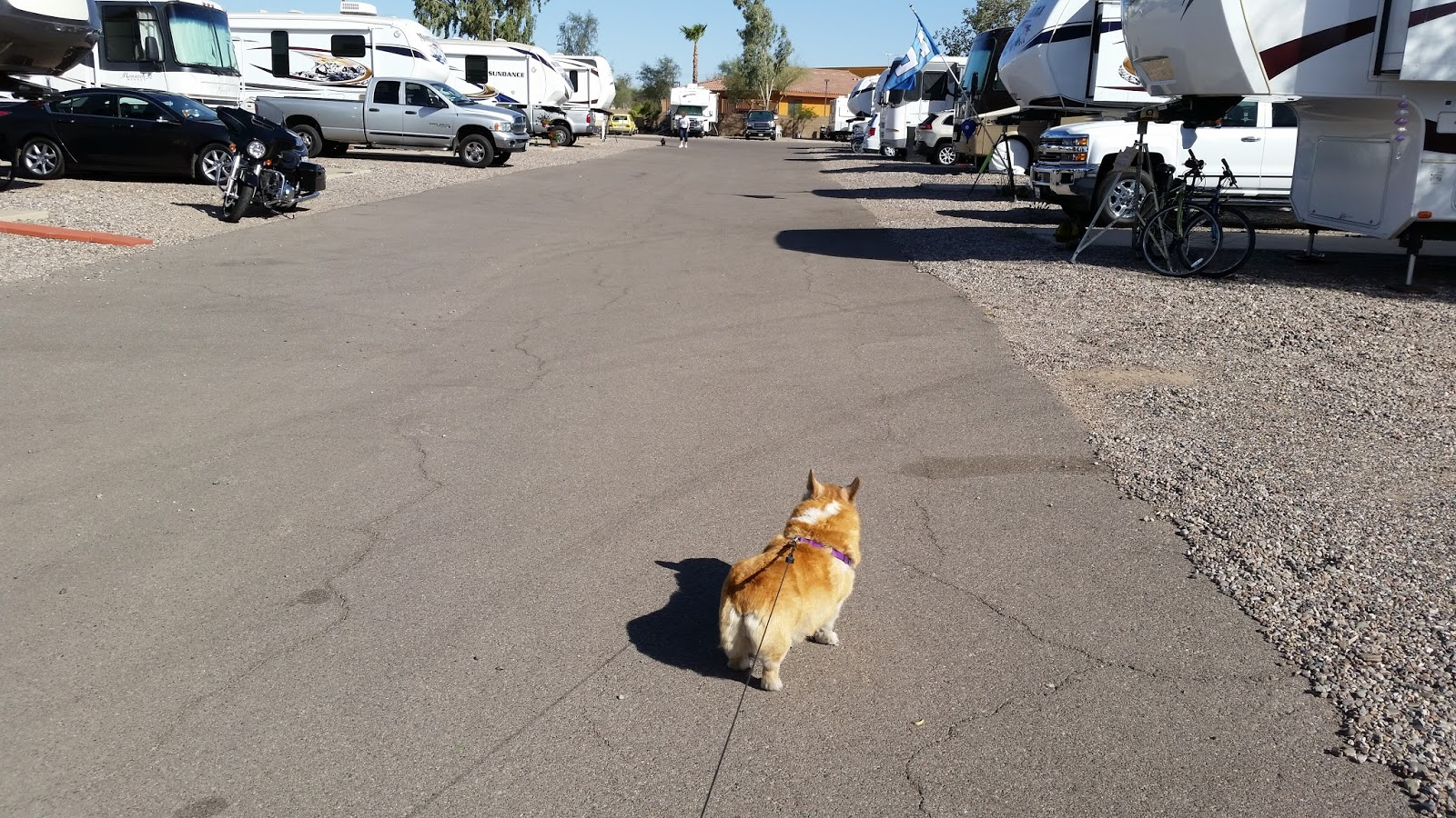 Pearl Blogs From The Road Living In An Rv Park