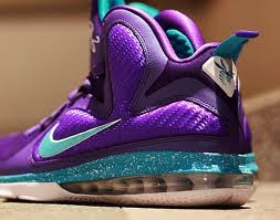 15251690dd04 WALE WEARING THE SUMMIT LAKE HORNETS LEBRON 9