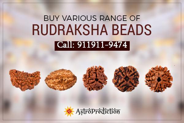 rudraksha buy online