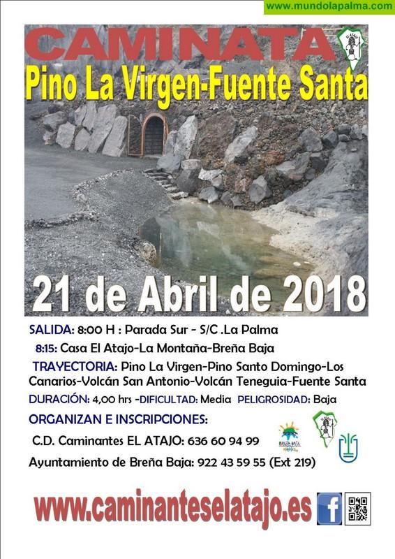 EL ATAJO: Pino de la Virgen - Fuente Santa (Fuencaliente)