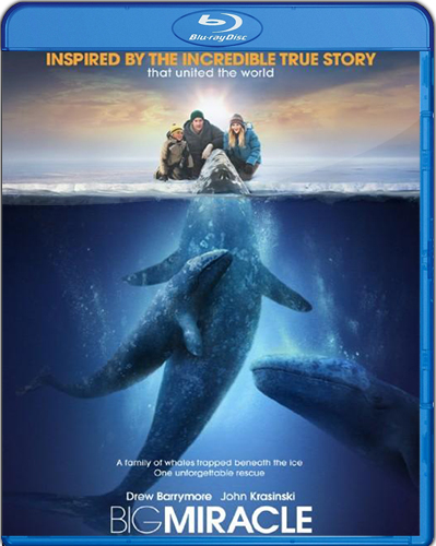 Big Miracle [2012] [BD25] [Latino]