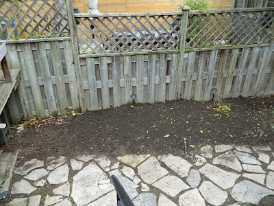 Leslieville Toronto Fall Cleanup After by Paul Jung Gardening Services--a Toronto Organic Gardening Services Company