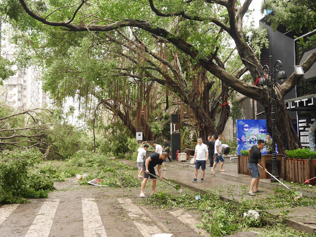people cleaning up debris from Typhoon Hato at the Bay Bar Street in Zhuhai