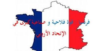 فرنسا قوة فلاحية وصناعية في الاتحاد الأوربي