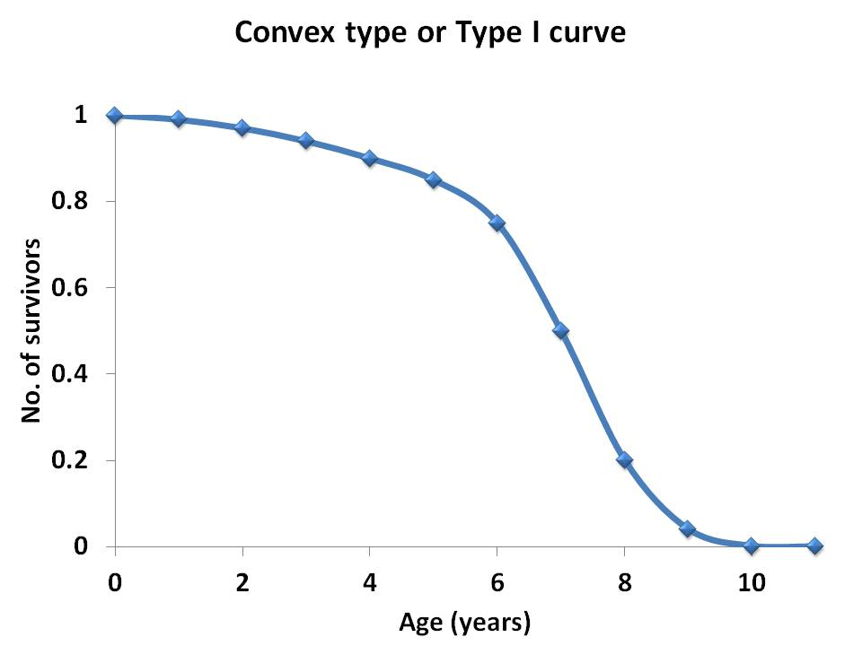 Sciencenotes population characteristics iii figure 2 convex type or type i survivorship curve obtained from the life table data between age x and lx ccuart Image collections