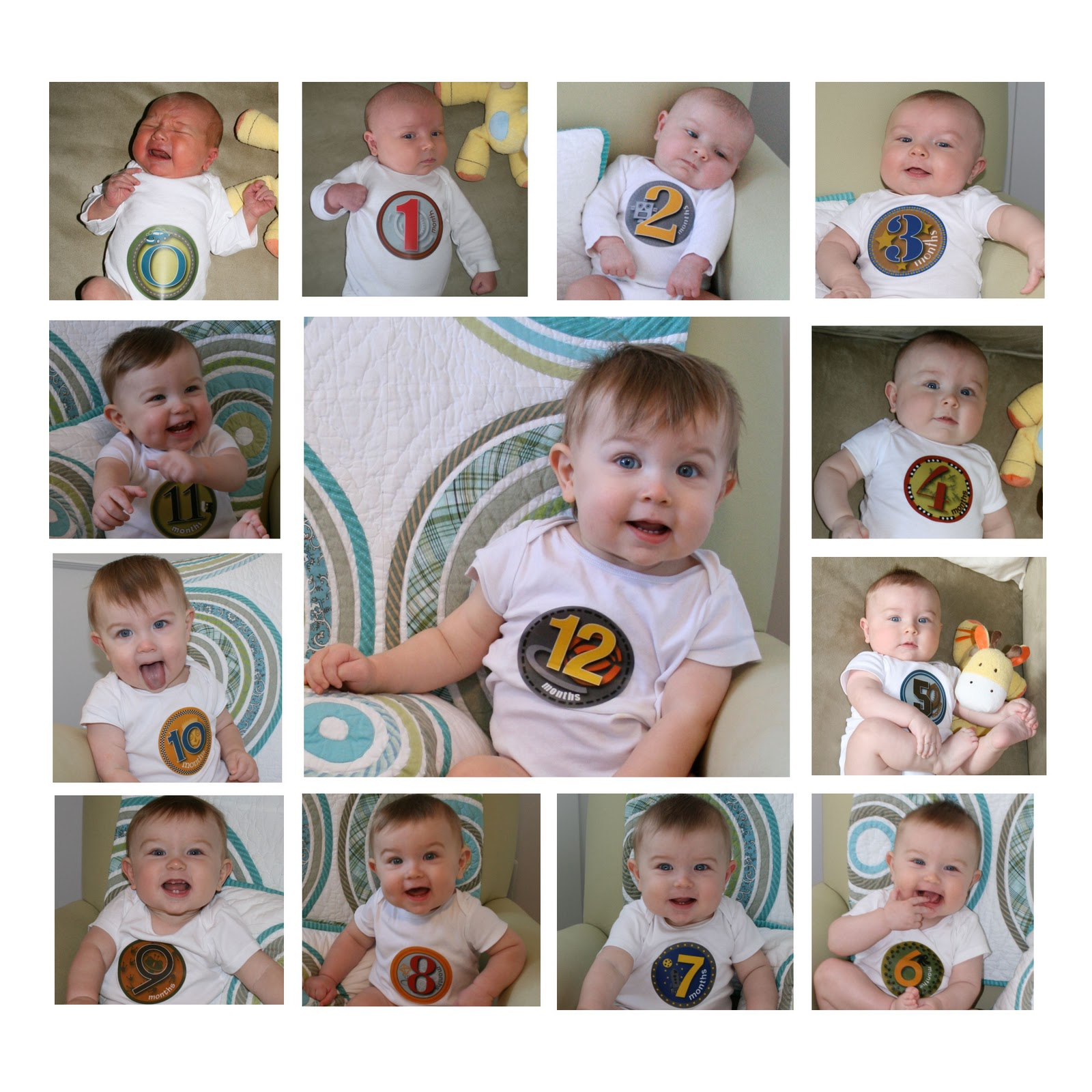 My Happy House Cam Is 12 Months