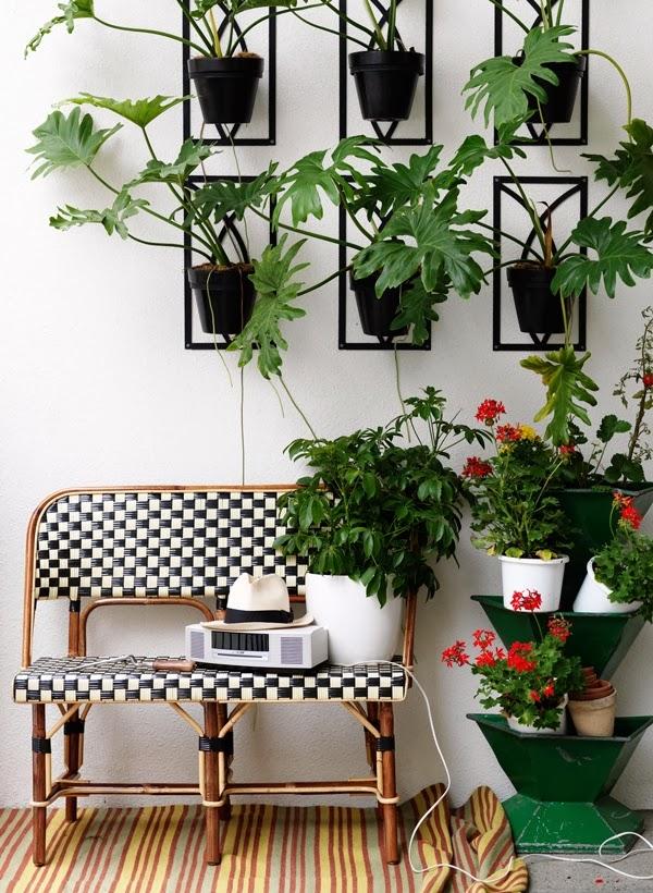 Las plantas en espacios peque os - Macetas para cocina ...