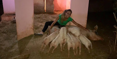 Paula, campeã do BBB19, reencontra Pippa, sua porca de estimação