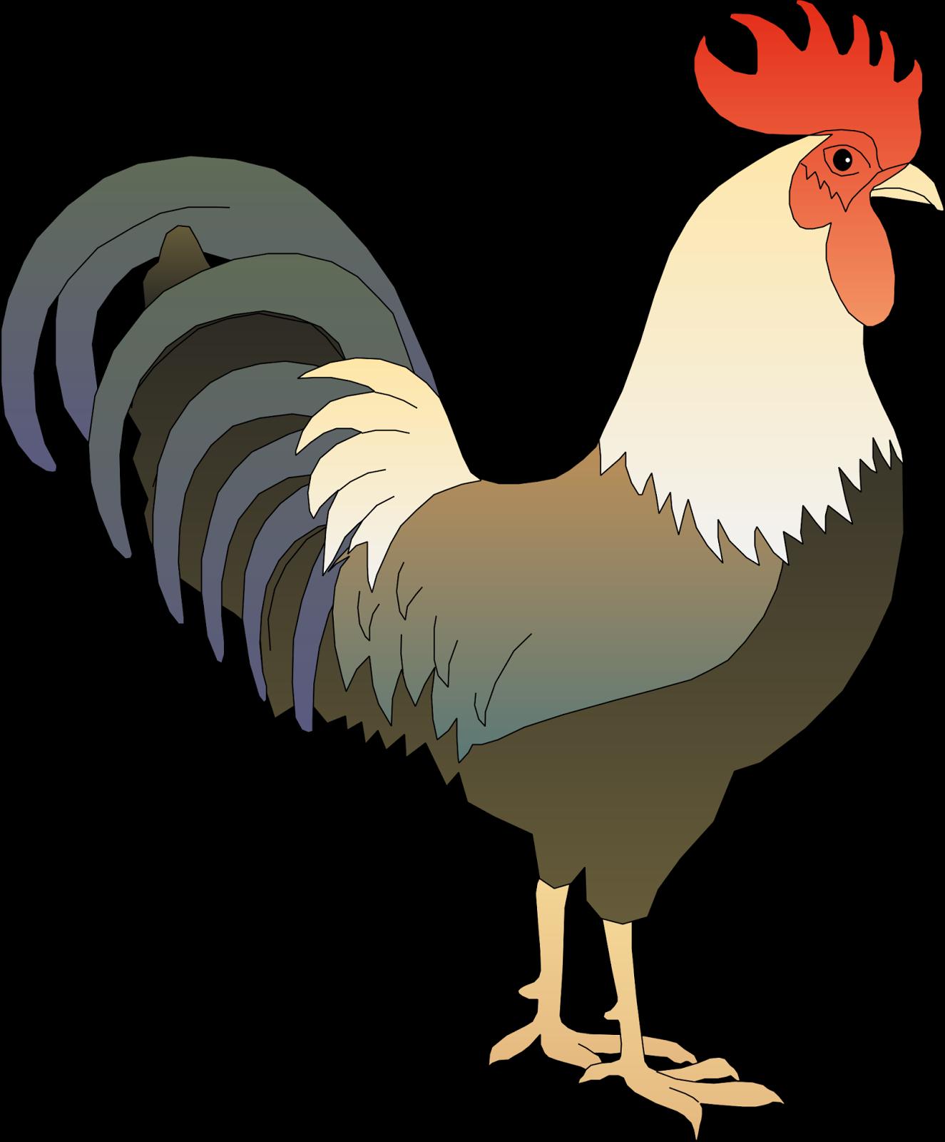 54+ Gambar Bagian Tubuh Hewan Ayam HD Terbaru