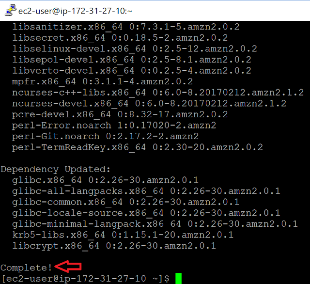 Amazon Linux 2 yum install完了