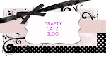 Crafty Catz Challenge Blog