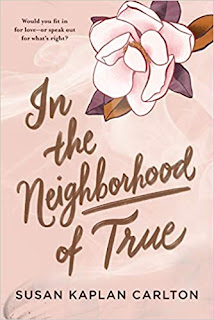 Book Review and GIVEAWAY: In the Neighborhood of True, by Susan Kaplan Carlton {ends 7/16}