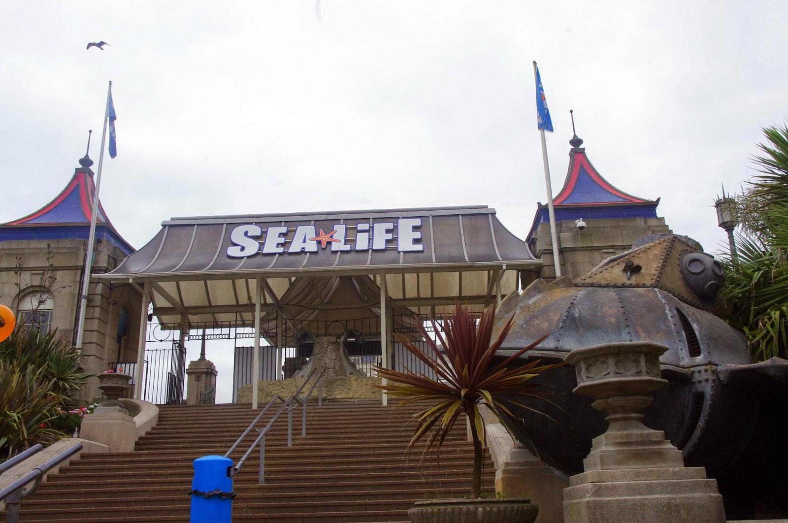 A Visit to Brighton's Sea Life Centre