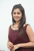 Nikki Galrani in a Brown Shining Sleeveless Gown at Nakshatram music launch ~  Exclusive 014.JPG