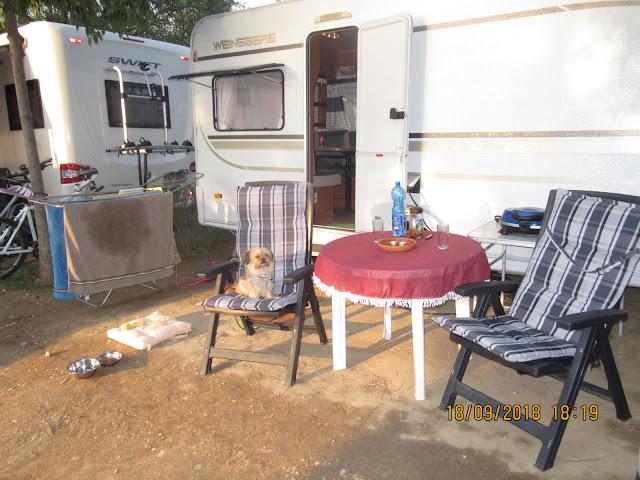 unser Stellplatz Nr. 63 auf dem Camping Continental in Bardolino