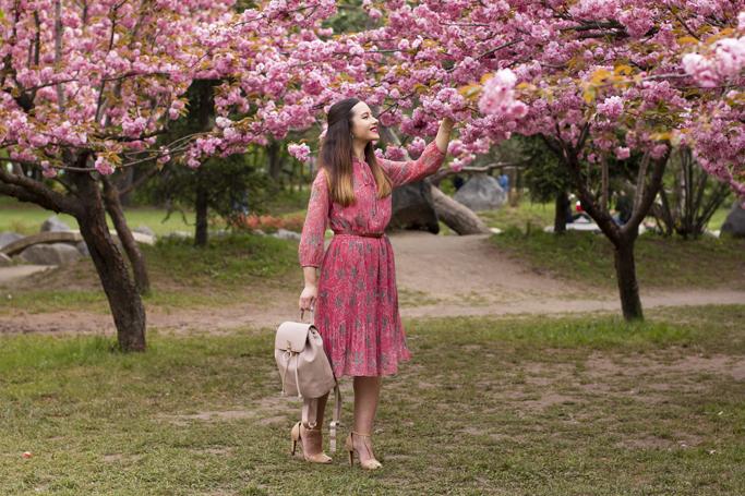 adina nanes pink sakura