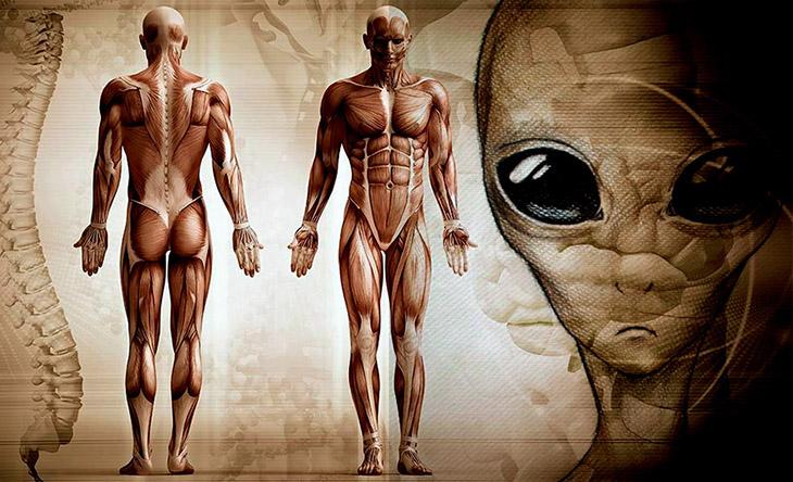 A, Bilimsel, Dünya dışı varlıkların insana müdahalesi,Homosapiens mühendisliği,Homosapiensleri geliştiren dünya dışı varlıklar,Kromozom-2 füzyonu ve insan,İnsanın evrimi,Uzaylılar,Dünya dışı yaşam