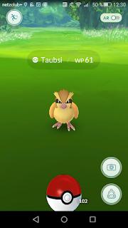 Pokemon Go Abnehmen