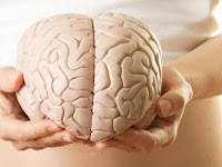 Terminal Brain Cancer Life Expectancy