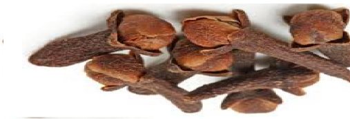 Cloves (Lavang) Spice in different Indian languages (regional)