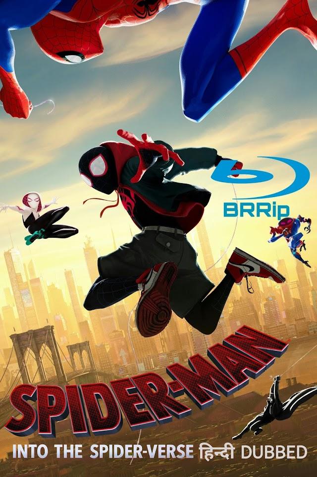 Spider-Man Into The Spider-Verse [ BRrip] Duel Audio