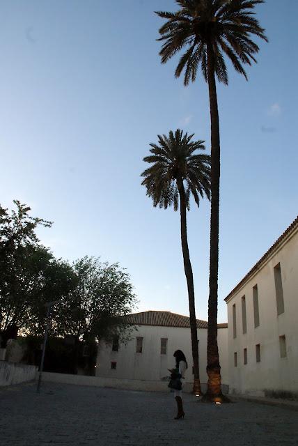 monasterio+la+cartuja+de+sevilla+de+noche