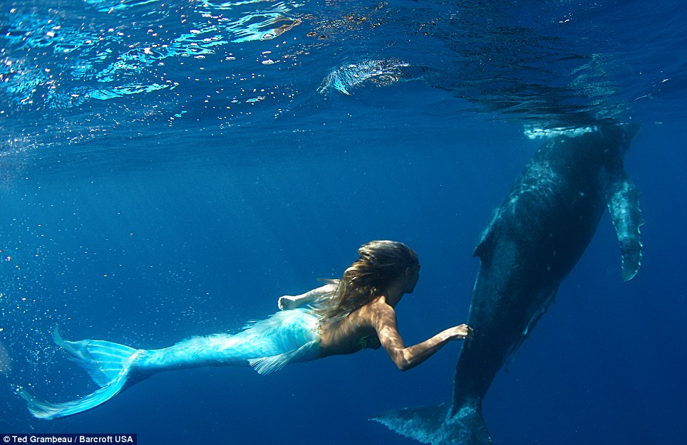 Real Life Mermaid - FunnyMadWorld